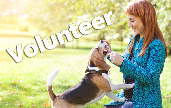 Allegan-pet-adoption-volunteer-2