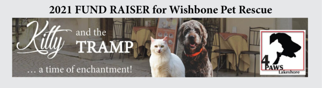 4 paws 2021 fundraiser